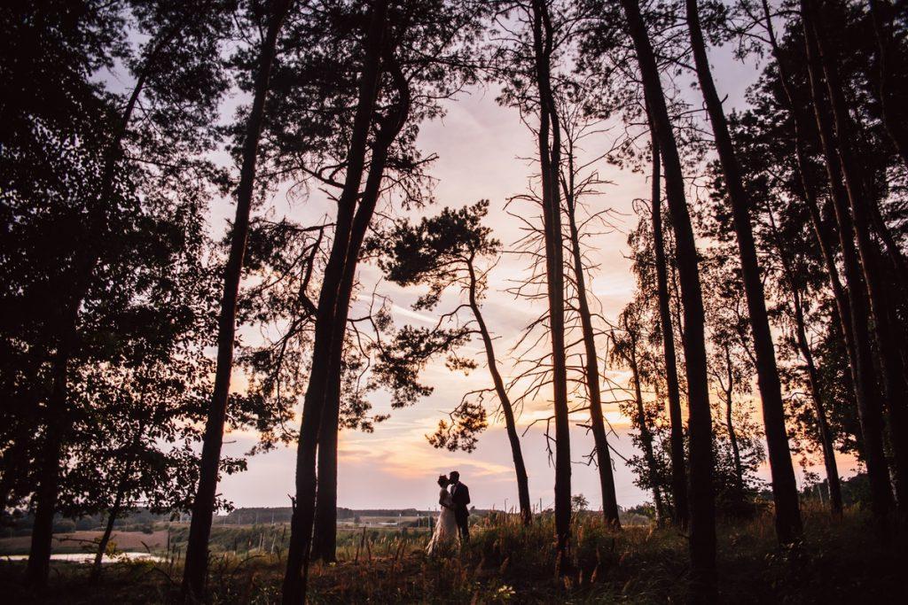 Szeroki plan ujęcie na parę młodą podczas zachodu słońca sesja plenerowa poznań